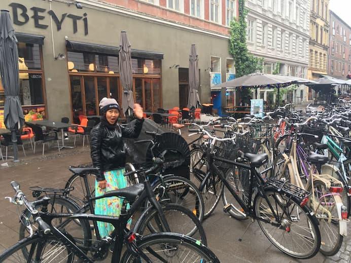 style danes fashion among bikes